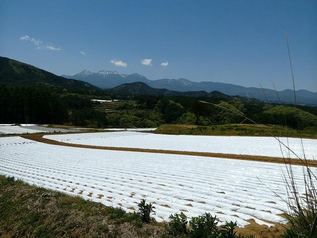 南相木村から見る八ヶ岳