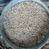 農家の冬仕事:大豆の選別